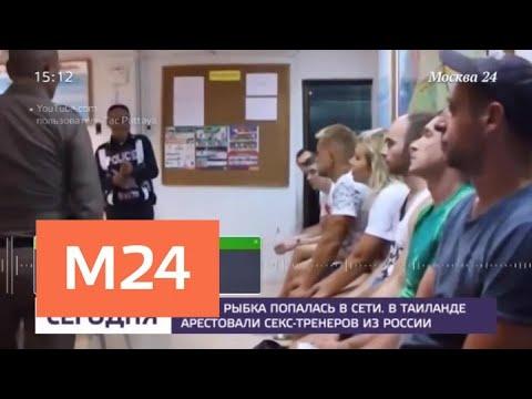 Видео урок секса для молодежи