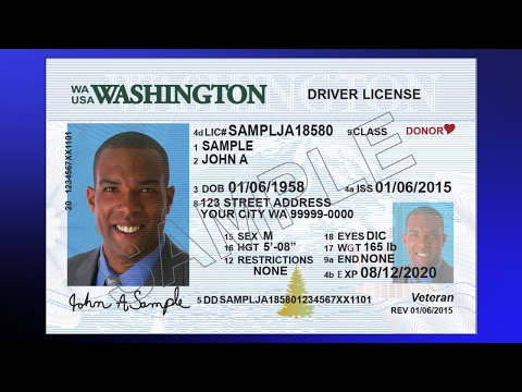 New License And Cards Youtube - Identification Wa Driver