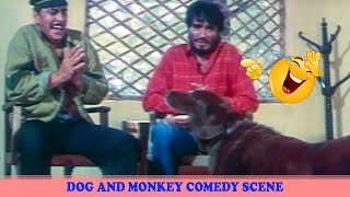 Dog and Monkey Comedy Scene | Kundan Movie