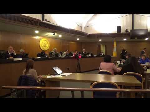 November 28, 2017 Hempstead Town Board Meeting