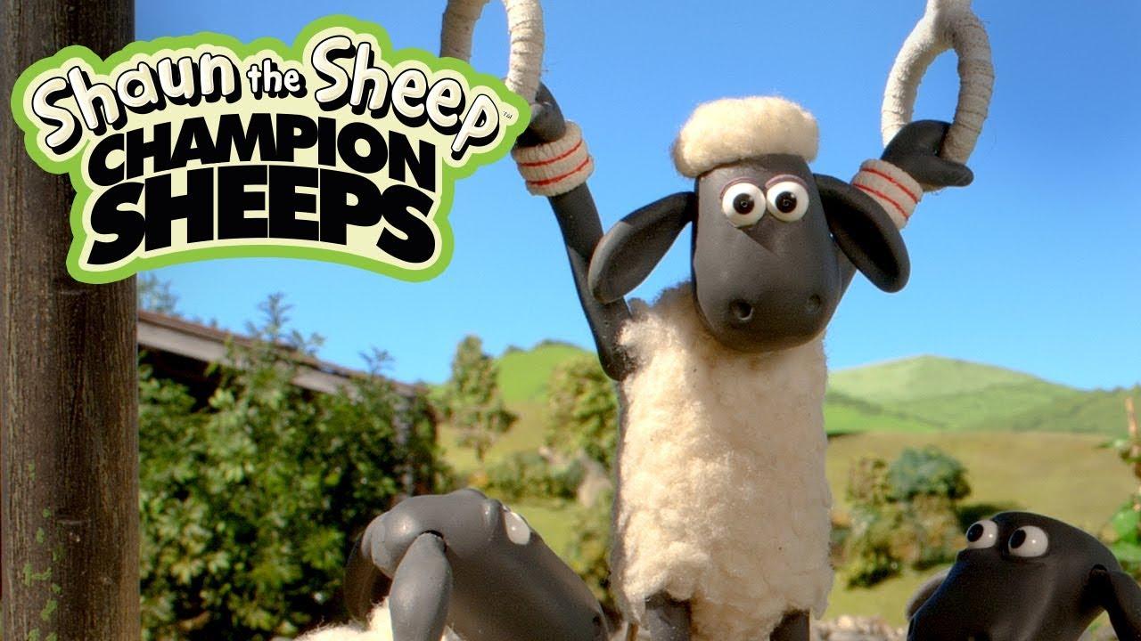 Vòng treo | Championsheeps | Những Chú Cừu Thông Minh [Shaun the Sheep]