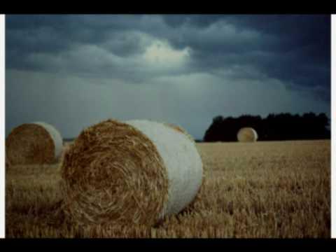 HANS HARTZ  Die Musik aus der Ferne Dacapos im Wind