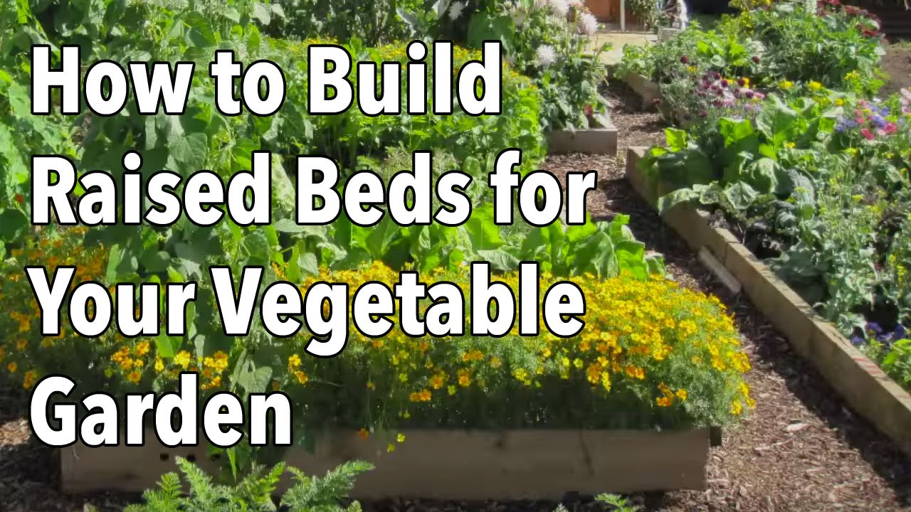 Raised vegetable garden layout 4x8 - Embedded Thumbnail For How To Build A Raised Vegetable Garden
