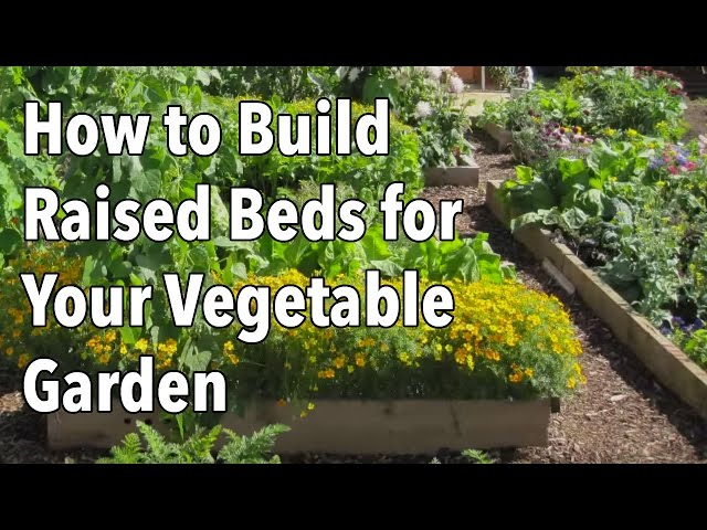 How To Build A Raised Garden Bed Step By Step Guide The Old Farmer S Almanac