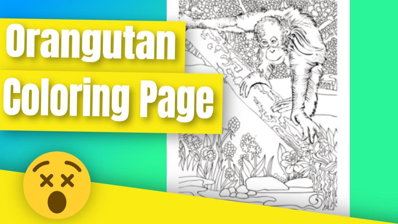 A Orangutan And Baby Coloring Pages - Orangutan Cute Coloring Page ... | 720x1280