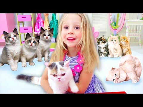 Stacy y papá compraron un gatito