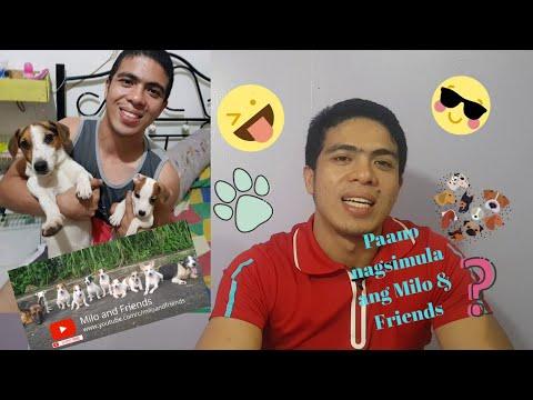 Ang Kwento ng Milo and Friends