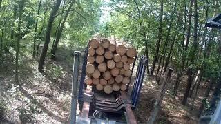 Praca kierowcy w lesie #VLOG1  Załadunek Drewna/ Zakład z kolegą/ Transport Leśny
