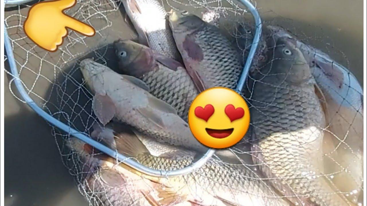 سحب شباك الصيد باسماء متابعينا الكرام