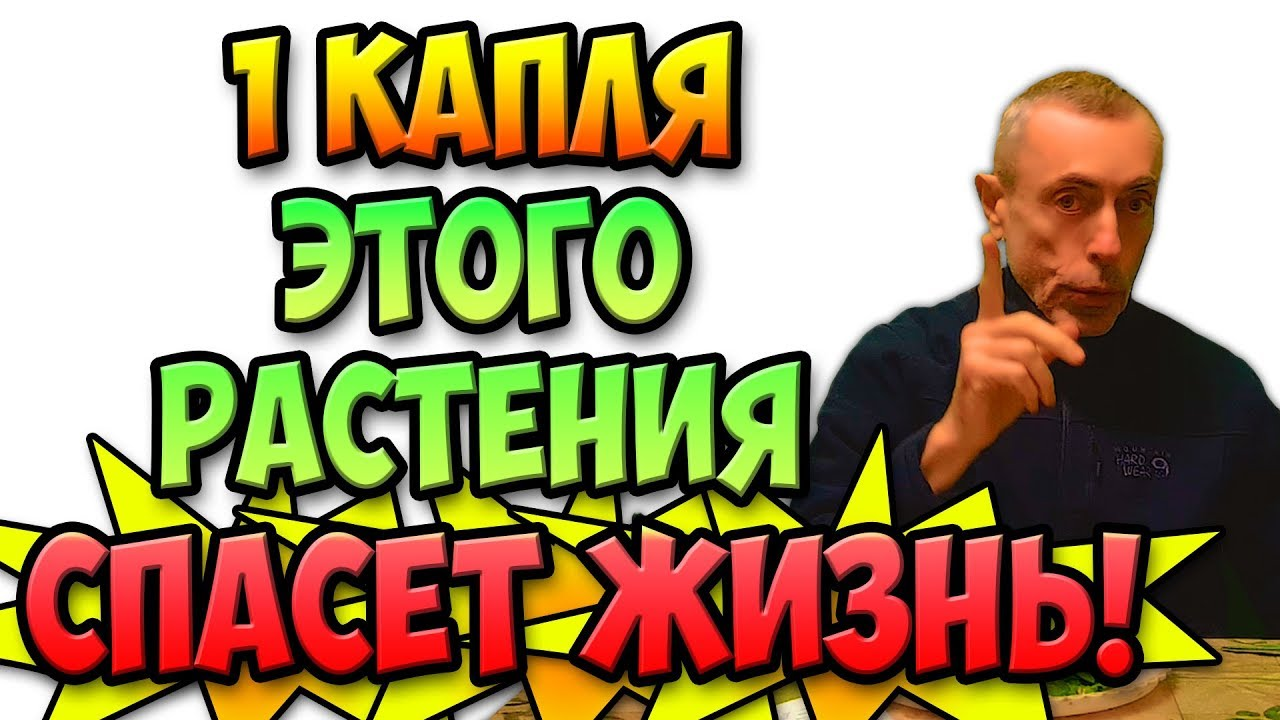 1 КАПЛЯ ЭТОГО РАСТЕНИЯ СПАСЕТ ЖИЗНЬ!  Виталий Островский. Похудеть, слабость, артрит.