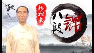 健身气功-八段锦(杨柏龙)