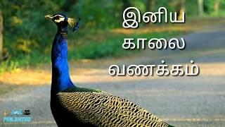 Iniya kaalai vanakkam இனிய காலை வணக்கம் Good morning in tamil HD