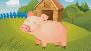 Животные на Ферме. Домашние Животные. Как говорят животные. Название животных для самых маленьких