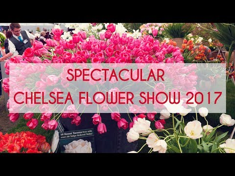 The Spectacular Chelsea Flower Show London 2017