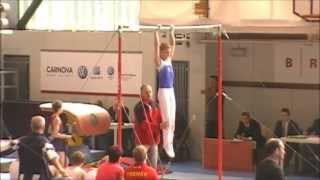 MČR ve sportovní gymnastice mužů Brno 1.6.2013