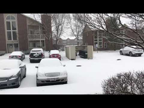 Snowfall in Chicago illinois