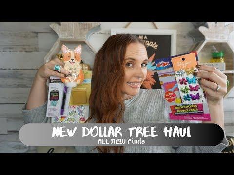 Dollar Tree haul September 17 2019| Amazing New Items