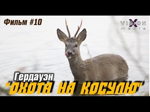 Фильм 10: Фото-Охота на косулю (не удалась)