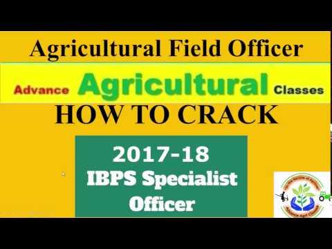 HOW TO CRACK IBPS AFO 2017-18 (Hindi/English)