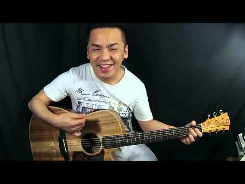 Cole Clark Fat Lady 2 EC Blackwood Guitar Review In Singapore