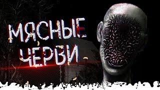 МЯСНЫЕ ЧЕРВИ | Деревня Лихо 3 серия | Страшная история