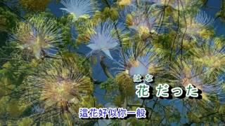 02-077    くちなしの花(梔子花)音圓 984786/43283  金嗓  40193