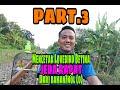 Part  Mencetak Lovebird Betina Jeda Rapat Dari Bahan Nol   Mp3 - Mp4 Download
