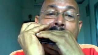 jaane kaha mera jigar gaya - harmonica