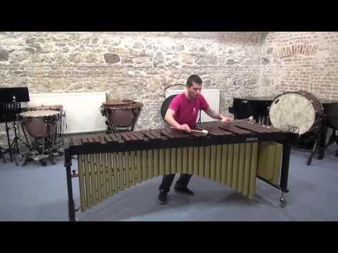 Rhythmic Caprice by Leigh Howard Stevens performed by Martin Švec
