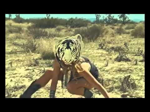 Ke$ha - The Cannibal Animal Megamix 2011