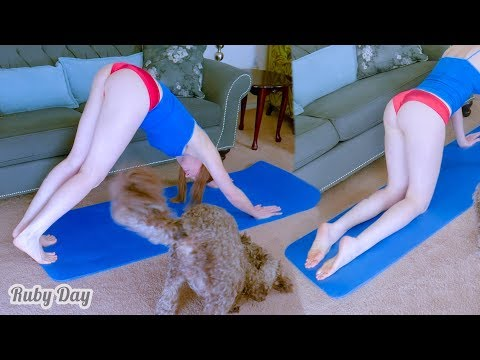 upward-dog-yoga-pose-challenge-with-pets-at-home