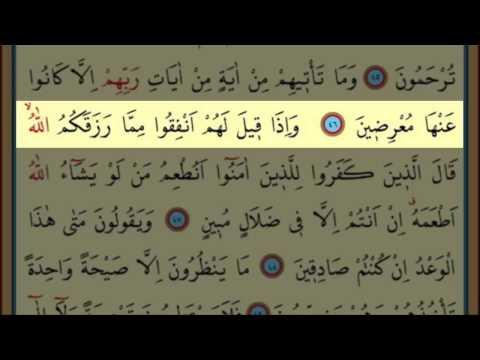 Surah Al-Ya Sin(36) by Nasser Al Qatami Majestic Recitation(Yasin)