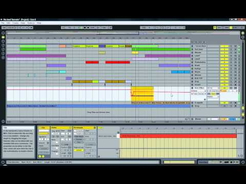 Afrojack & Steve Aoki ft Miss Palmer - No Beef(Ableton Live remake)