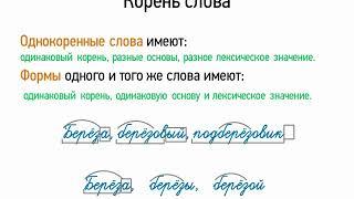 Корень слова (5 класс, видеоурок-презентация)