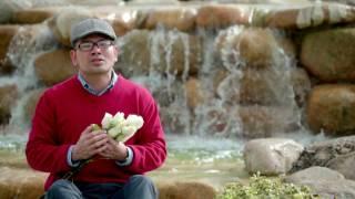 Nếu Mẹ Cho Con - Lm. An Bình (Official MV)