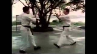 """The Way of the Warrior: Tai Chi, the Soft Way"" (Entire Video)"