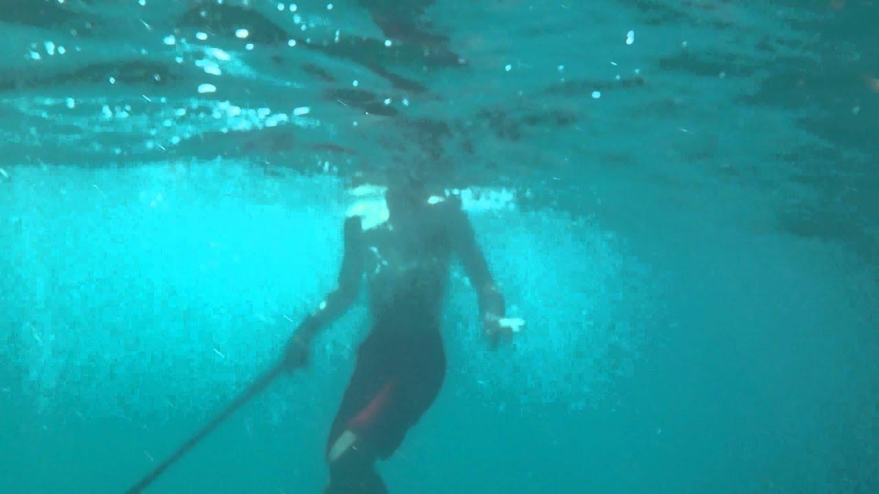 Plongée Sous Marine Korba 6