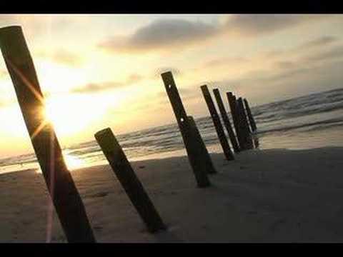 A beach on Galveston TX
