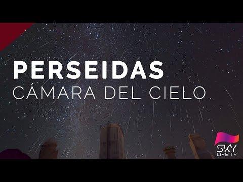Perseidas 2017 - Camara del cielo en Directo