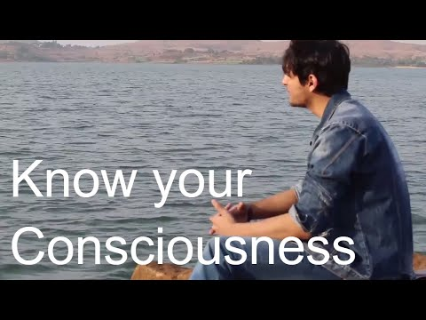 Only Consciousness is REAL !