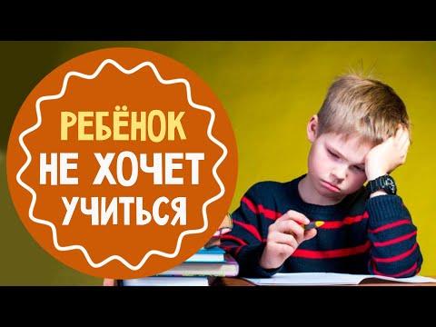 Ребёнок не хочет учиться: 5 советов родителям