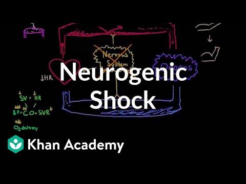 Neurogenic shock | Circulatory System and Disease | NCLEX-RN | Khan Academy