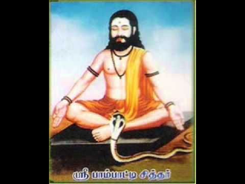 paambaatti siddhar, tamil alchemy