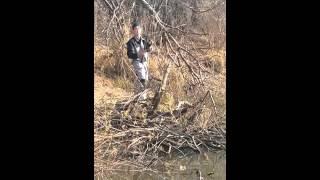 VID 20151025 WA0011(рыбалка на реке илистая село Черниговка., 2015-10-28T11:33:37.000Z)