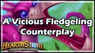 [Hearthstone] A Vicious Fledgeling Counterplay