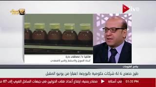 خطة الحكومة المتعلقة بطرح الشركات الحكومية في البورصة المصرية - د. مصطفى بدرة