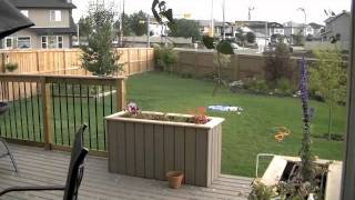 July 19 storm in Airdrie Alberta