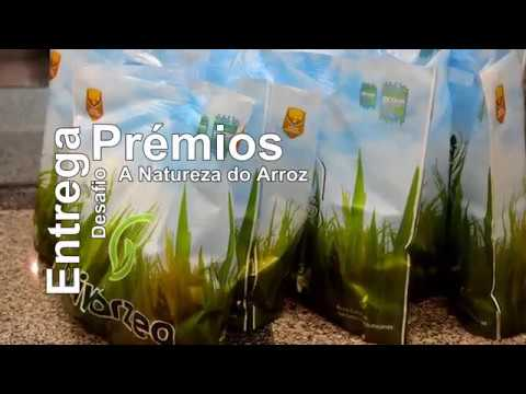 Desafio a Natureza Arroz - Entrega Prémios
