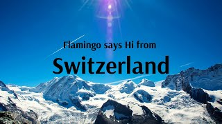 All about Switzerland with Flamingo Transworld!