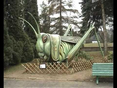 Wrocław Ogród Zoologiczny 17 Lutego 2011